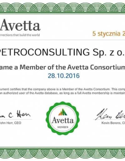Avetta - audyt - 05.01.2018